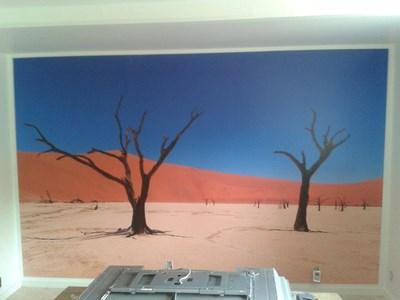 Maler billeder